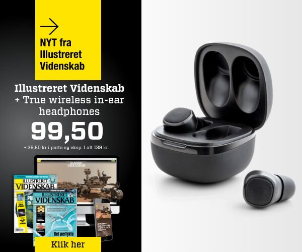 True Wireless in-ear for kun 99,50 kr.