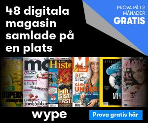 Wype - testa 1 månad gratis